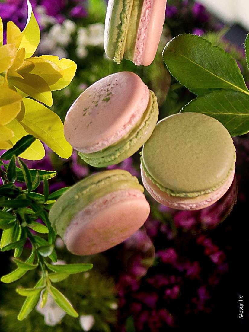 Matcha-Green-Tea-esqrille-3