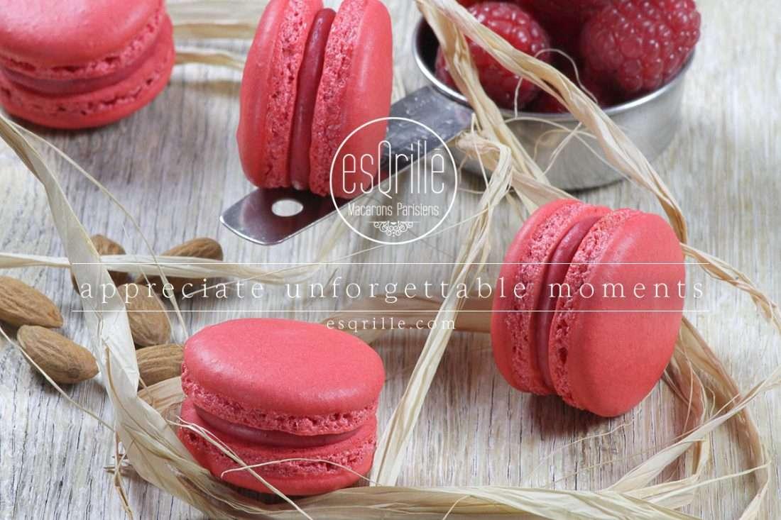 raspberry-Macaron-3