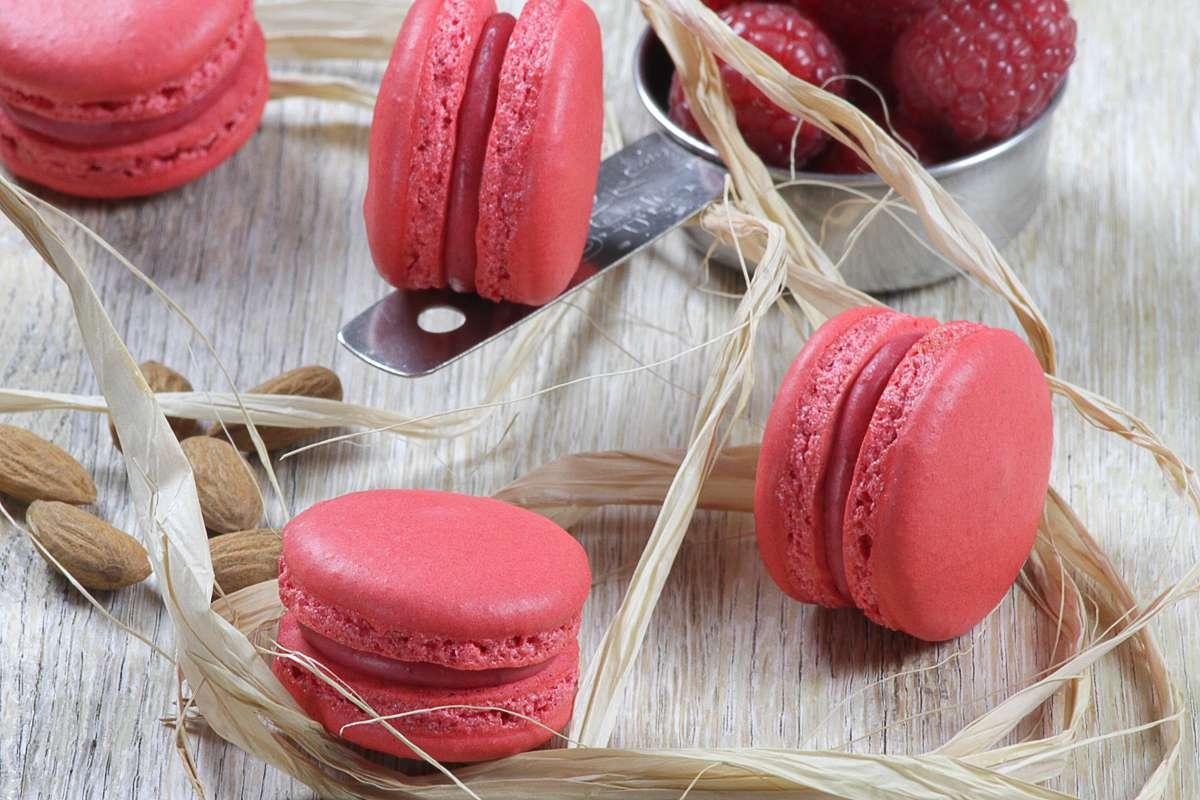 Esqrille macarons food photography grey dash ad agency raspberry macaron 2 urmus Image collections
